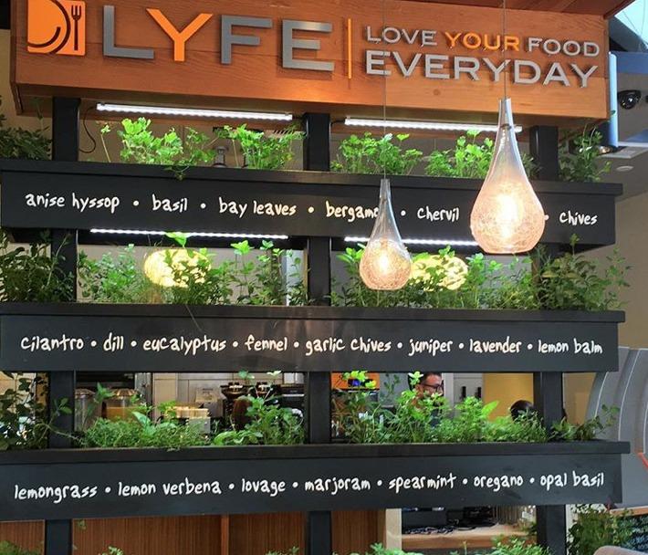 Lyfe Kitchen Palo Alto Ca: 最高明的吃法:低碳好饮食,湾区有机餐厅合辑
